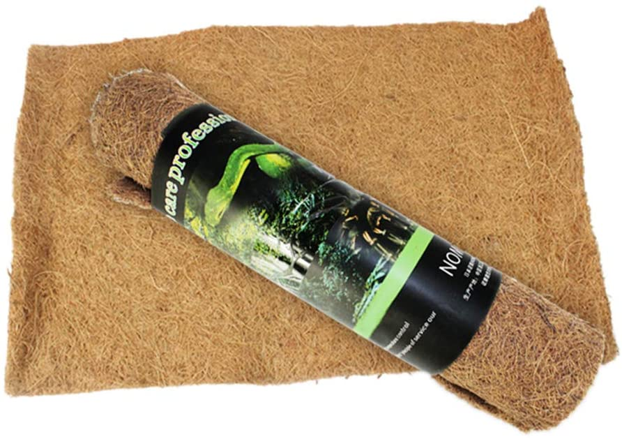 sustrato gecko fibra de coco